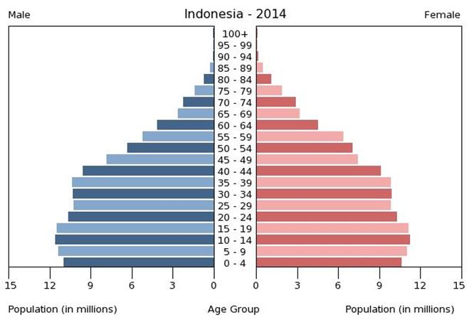 Population Pyramid; Source: the World Factbook